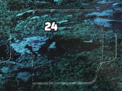 75245 Case 24 DY
