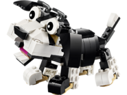 31021 Mes animaux de compagnie 5