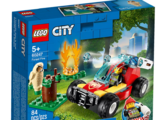 60247 Forest Fire