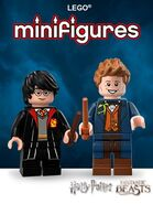 LEGOMinifiguresHarryPotterWindow