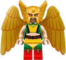 70919 Hawkgirl (1)