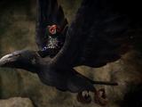 Raven Legend Beast