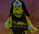 Wonder Woman (Cheetah Disguise)