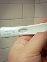 Isabel Pregnancy Test