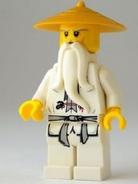 Sensei Wu Gold Hat