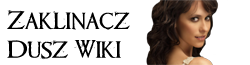 Zaklinacz Dusz Wiki logo