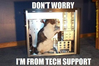 350px-Tech support kitty