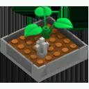 Fortress Zen Garden 4
