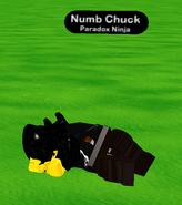 Original Numb Chuck