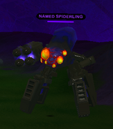 NAMED SPIDERLING 2