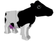 VE Cow
