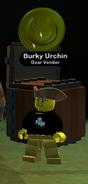 Burky urchin 2
