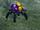 75x/New Dark Spiderling