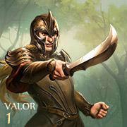 Elfes guerriers