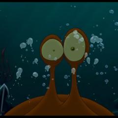 La Pieuvre a été réveillée par Crochet