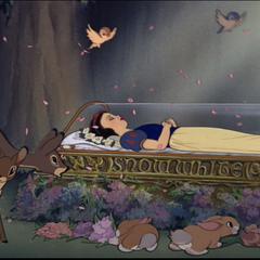 Blanche-Neige dans le cercueil de verre.