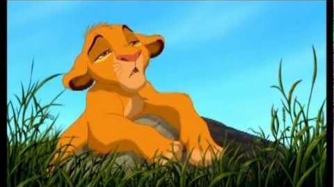 Le roi lion , Le rapport du matin
