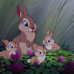 Madame Lapin et ses Filles