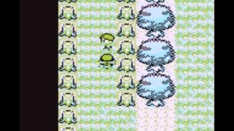 Level 100 Pokemon before Brock (RED AND BLUE)