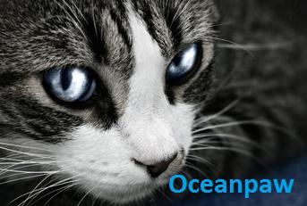 Oceanpaw