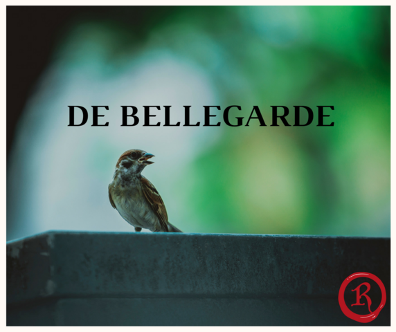 File:De bellegarde.png