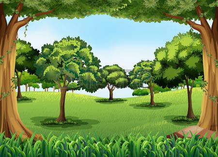 Image - Forêt dessin.jpg | Wiki Les aventures de Marie l'araignée | FANDOM powered by Wikia