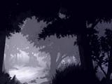 Forêt de l'Arbre Millénaire