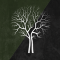 Birchall profile