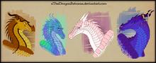 DragonsHybride