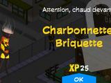 Charbonnette Briquette
