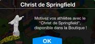 ChristdeSpringfieldInfo