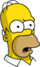 Homer Confus Icon