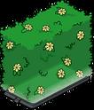 Holo-haie fleurie