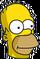 Ninja Homer Icon