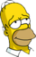 Homer Rêveur Icon