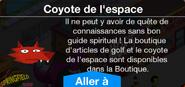BoutiqueCoyotedel'espace