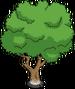 Holo-arbre1