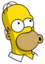 Homer Wouh-ouh Icon