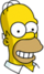 Homer content Icon