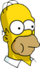 Homer Mâche Icon