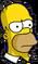 Homer sérieux Icon