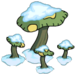Gros champignons
