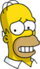 Homer Coupable Icon