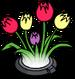 Holo-tulipes