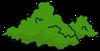 Arbuste1