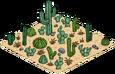 Parcelle de cactus