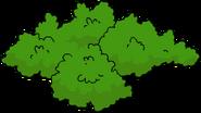 Arbuste2