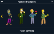 Famille Flanders 3