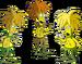 Clones de Tahiti Bob