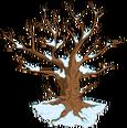 Esprit du vieil arbre